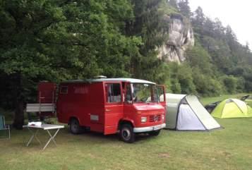 Wohnmobil mieten in Neusitz von privat   Mercedes Benz Molekül