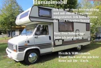 Wohnmobil mieten in Gössendorf von privat   Bürstner   Hummimobil