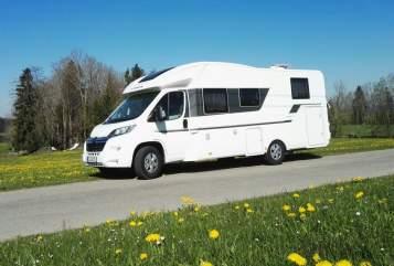Wohnmobil mieten in Tannheim von privat   Adria Schorschi