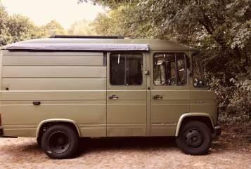 Wohnmobil mieten in Aalsmeer von privat | Mercedes 508D Olive