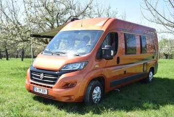 Wohnmobil mieten in Gomaringen von privat | Weinsberg Mufasa