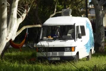 Wohnmobil mieten in Waakirchen von privat | Mercedes Bushard