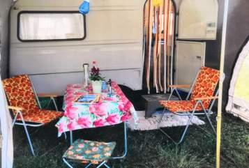 Wohnmobil mieten in Meißen von privat | QEK Hippie Junior