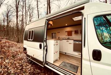 Wohnmobil mieten in Neustadt an der Weinstraße von privat | Fiat DIY Campervan