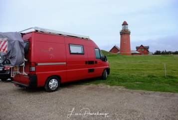 Wohnmobil mieten in Nieuw-Buinen von privat | Peugeot  Het rode bussie
