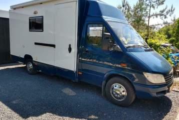 Wohnmobil mieten in Tilburg von privat | Mercedes Bakkie