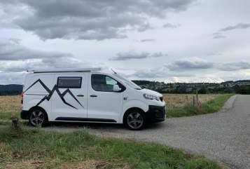 Wohnmobil mieten in Linz von privat | Peugeot Leo