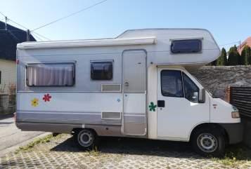 Wohnmobil mieten in Regau von privat | Fiat Ducato MaisoNette