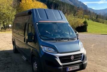 Wohnmobil mieten in Leopoldstadt von privat   Weinsberg Franzl