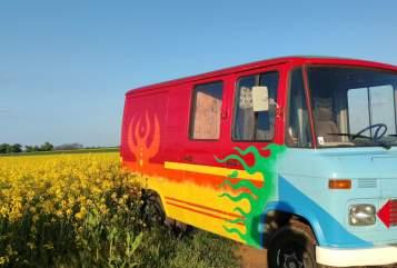 Wohnmobil mieten in Meidling von privat   Mercedes Bruno