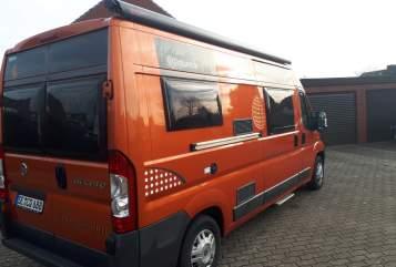 Wohnmobil mieten in Henstedt-Ulzburg von privat   Dethleffs/Globecar Bernds Camper
