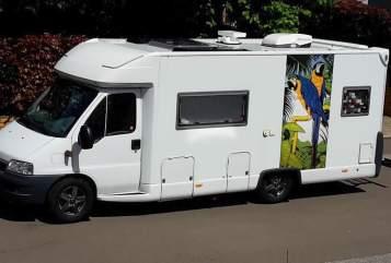 Wohnmobil mieten in Kirchheimbolanden von privat   Fiat Ducato Globetrotter