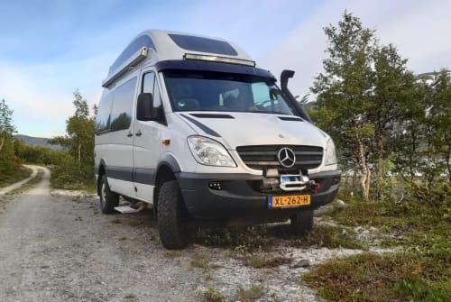 Wohnmobil mieten in Wapenveld von privat | Mercedes  Zwerver