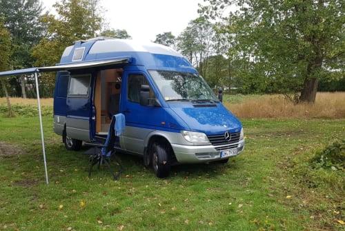 Wohnmobil mieten in Fehmarn von privat | Mercedes Ohty