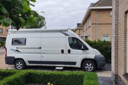 Wohnmobil mieten in Hoogeveen von privat   Fiat White Label