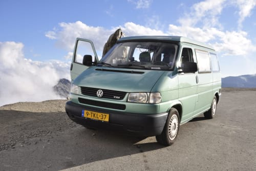 Wohnmobil mieten in Amsterdam von privat | Volkswagen CaliforniaCoach