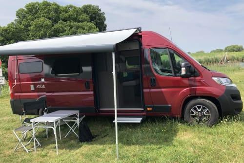 Wohnmobil mieten in Bonn von privat | Bürstner Froh