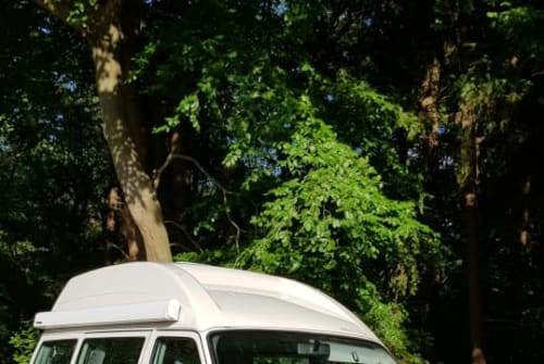 Wohnmobil mieten in Hoogeveen von privat   volkswagen vw westfalia