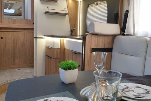 Wohnmobil mieten in Solingen von privat | Pilote  *Starfinder*