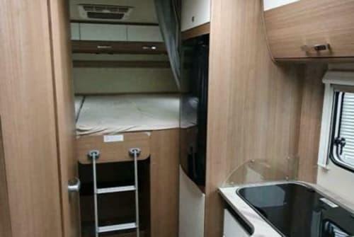 Wohnmobil mieten in Geesthacht von privat | Carado Carado  T448