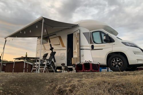 Wohnmobil mieten in Bad Honnef von privat | Eura Mobil  Sunny Comfort
