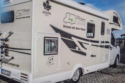Wohnmobil mieten in Buchenberg von privat | Renault AllgäuCamper