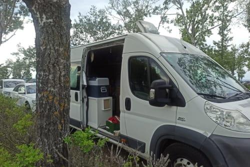 Wohnmobil mieten in Margareten von privat   Fiat  Ducky dinosaur