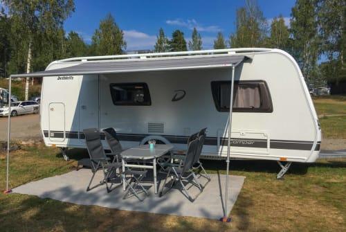 Wohnmobil mieten in Wernau (Neckar) von privat   Dethleffs Camper