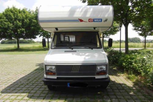 Wohnmobil mieten in Bottrop von privat | Fiat ducato 280 wilk
