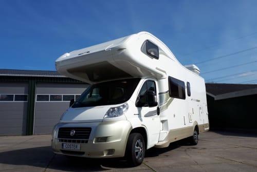 Wohnmobil mieten in Utrecht von privat | Fiat  Camper 1