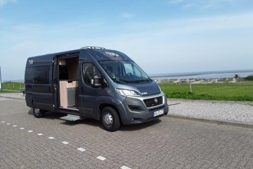 Wohnmobil mieten in Werdum von privat   Pössl Roadcar Automatik Black Sauser