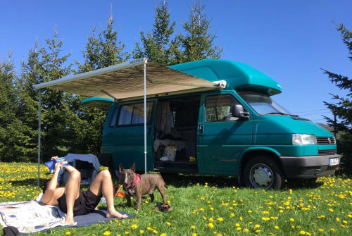 Wohnmobil mieten in Berlin von privat | VW   Pommes the Van