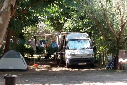 Wohnmobil mieten in Gänserndorf von privat | Fiat Bus
