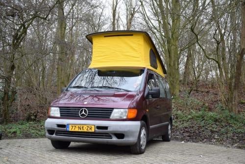 Wohnmobil mieten in Zoetermeer von privat | Mercedes Benz  De Vito