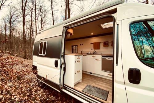 Wohnmobil mieten in Neustadt an der Weinstraße von privat   Fiat DIY Campervan