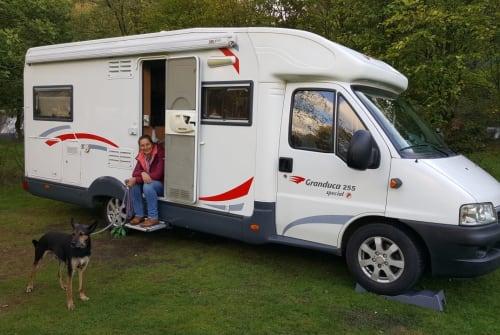 Wohnmobil mieten in Helmond von privat | Fiat il topo