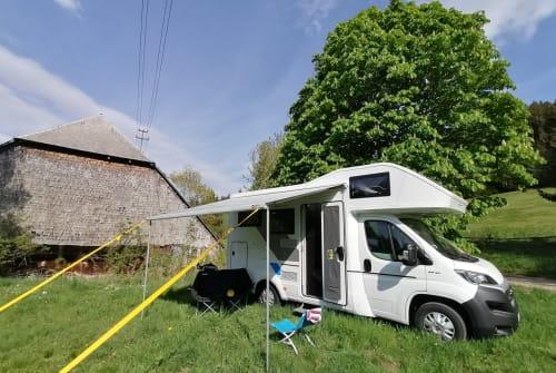 Wohnmobil mieten in Grenzach-Wyhlen von privat | SunLiving Sunny