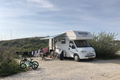 Wohnmobil mieten in Eindhoven von privat | Fiat Elnagh Joxy Joy