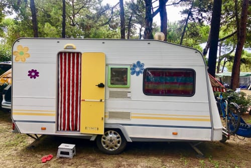 Wohnmobil mieten in Erfurt von privat | Knaus  Flowermobil