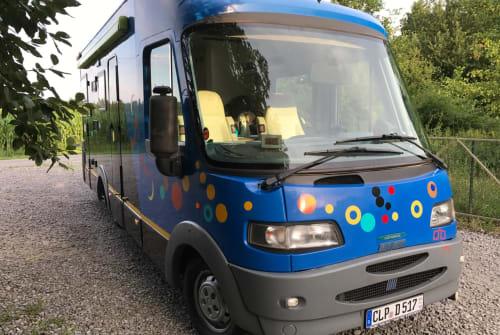 Wohnmobil mieten in Essen (Oldenburg) von privat | Fiat Ducato  Zoo