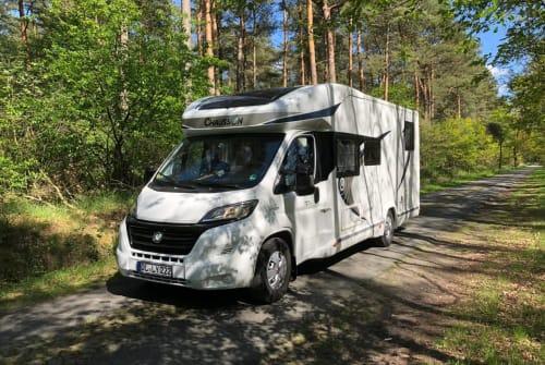 Wohnmobil mieten in Oldenburg von privat | Chausson  OLLY